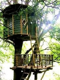 Building a tree house on two levels is far more fun!