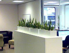 35 Best Desktop Planters Images On Pinterest Indoor