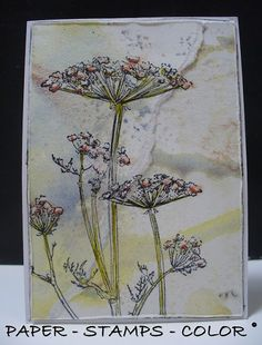 PAPER - STAMPS - COLOR: Reminder TIMI challenge from The Craft Stamper