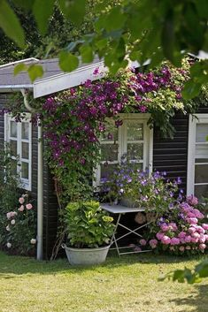 Affordable And Effective Cottage Garden Designing Methods For Your Home Your home is your world, and much like the world around us, looks are important. You may take your time to care for your house, but what about your yard? Shed Design, Balcony Design, Clematis, Grandmas Garden, Cottage Garden Plants, Cottage Gardens, Home And Garden Store, Relax, Backyard Garden Design