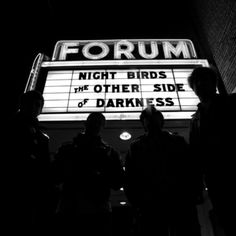Hardcore and surf punk from the band Night Birds. Fans of The Dead Kennedys, Ramones, Minor Threat etc should get on to this. The songs are fast and fun and have the genuine feel of '80s punk despite only being released last year. Seriously, I didn't know that a vocalist could still sound like that in the 21st Century. This 13-track album costs $8 and you can listen to a couple of the tracks via the link. Also check out their compilation 'Fresh Kills vol. 1' which is also sick.
