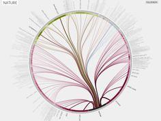 Journal Citations Visualized