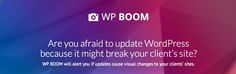 Scared of pushing that update button in WordPress? Wondering if your theme or plugin update will break your site? Check out WPBoom.