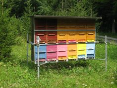 Bee Hives, Bee Friendly, Beekeeping, Science And Nature, Bees, Beehive, Science And Nature Books, Accounting