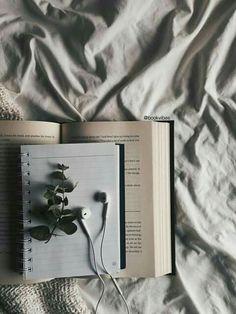 Cuando leeo