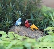 miniature songbirds, miniature birds, mini birds, mini resin birds, miniature cardinal, miniature blue jay, miniature goldfinch, miniature golden oriole