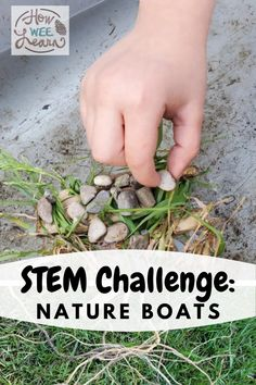 Such an easy STEM challenge for preschoolers! Make a nature boat out of grass, leaves, twigs, and flowers that can hold some small rocks or pebbles. Educational Activities For Preschoolers, Creative Activities For Kids, Steam Activities, Preschool Science, Science Education, Steam Learning, Early Learning, Summer Camps, Stem Challenges