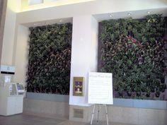 evergreen walls interior - Google Search