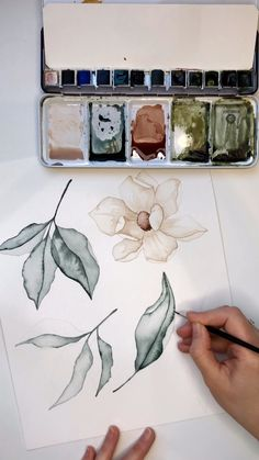Adding details to these watercolor botanics. Creating light colored florals is always a challenge but this one turned out lovely. Music by drawings videos Watercolor Botanics by Skyla Design Watercolor Art Lessons, Watercolor Painting Techniques, Watercolor Paintings, Watercolor Landscape, Watercolour, Watercolor Stickers, Abstract Watercolor Art, Watercolor Trees, Watercolor Artists