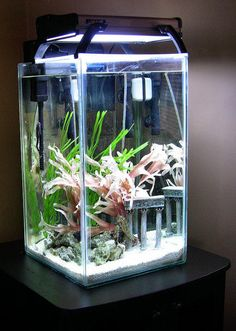 This little DIY 12 gallon tall aquarium was originally inspired as a special design for housing seahorses, but it can be used as a small community fish or reef tank as well. Just follow these easy step-by-step instructions to build one just like ours.