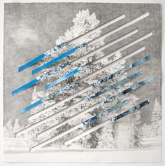 "Letha Wilson, TITLE: Reverse Colorado Rip DATE: 2010 MATERIALS: Xerox transfer, graphite, C-print on cut paper DIMENSIONS: 22"" x 22"" x 3"""