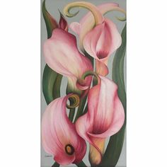 Framed oil painting of pink calla lilies by Charlotte Ambler. Inspired by the work of Georgia O'Keeffe. Beautiful Paintings Of Flowers, Oil Painting Flowers, Flower Paintings, Oil Paintings, Lilies Drawing, Painting & Drawing, Calla Lilies, Soap Recipes, Botanical Art