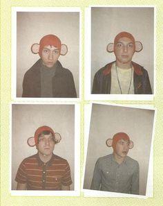 The Arctic Monkeys as Monkeys haha