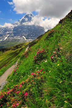Hike from Mannlichen towards Kleine Scheidegg, Eiger