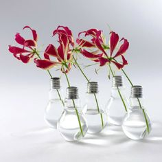 Recycle old light bulbs - A&D Blog