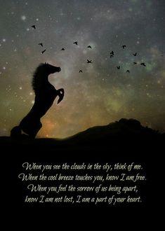 Wild Horses Quotes, Horse Riding Quotes, Horse Love Quotes, Funny Horse Quotes, Cowboy Quotes, Most Beautiful Animals, Beautiful Horses, Majestic Horse, Spirit Der Wilde Mustang