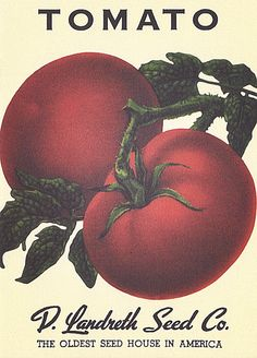 As featured in House Beautiful magazine We chose 18 of our favorite vintage vegetable seed packets from our neighbors at Landreth Seeds and turned them into beautiful note cards. Plus, each card has a