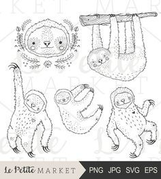 Hand Drawn Sloth Clip Art, Cute Sloth Clipart, Cute Sloth Digital Stamp, Sloth Coloring, Cute Sloth Illustration, Sloth Vector Clipart