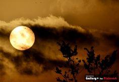 Na noite desta terça-feira (5), no horário de Brasília, até a madrugada desta quarta (6), aconteceu o trânsito de Vênus entre a Terra e Sol. (junho 2012)