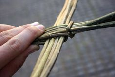 Blackberry bramble weaving - excellent instructions from start to finish. These instructions are applicable for any other kind of vine basket weaving. Paper Basket Weaving, Blackberry Bramble, Rope Basket, Garden Projects, Crafting, Miniatures, Miniature Tutorials, Ecology, Magick