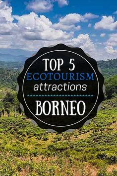 Top 5 Ecotourism Attractions In Sabah Borneo