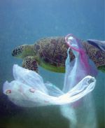 Image result for rubbish damages the environment