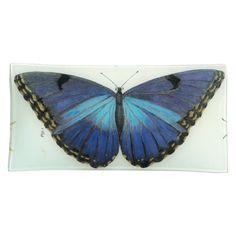 Blue Butterfly | John Derian Decoupage Pencil Tray