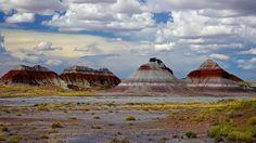 Image result for algerian petrified desert