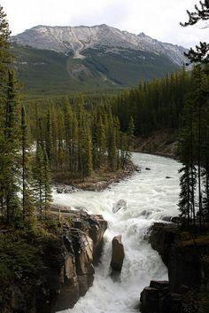 Sunwapta Falls - Jasper National Park - Alberta by Pascal