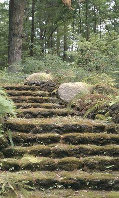 Tower Hill Botanical Garden - The Moss Steps