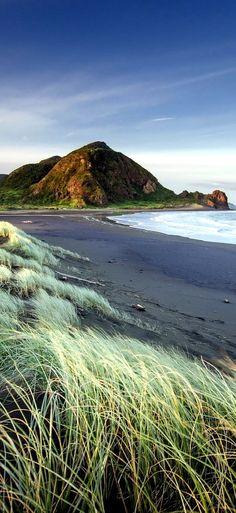 Auckland beach - New Zealand