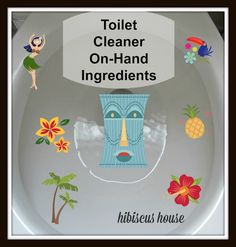 Hibiscus House: Toilet Cleaner Only Two Ingredients!