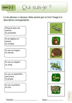 French Teaching Resources, Teaching French, French Education, French Classroom, French Immersion, New Job, Comprehension, Kids And Parenting, Language