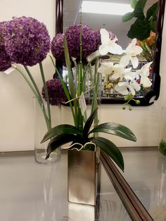 """SOLD! White Orchid Plant $68.00 (Dimensions: 27""""H x 15""""W) www.plantworks.com"""