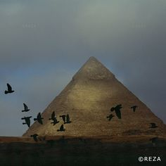 """thephotosociety: """"Photo: @rezaphotography // Illustration and Representation // #Egypt Pyramid of Khafre  I was on assignment for National Geographic on Nile Delta.  One can capture the beauty and nobility of a monument if one is careful to choose the right angle and wait for the right light. I do sometimes do that but it is not what I am after nor what I prefer. I prefer to interpret a monument retrace its history.  In Egypt the pyramids are often represented in full light alone and lost in…"""