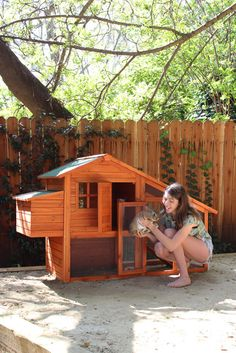 cute rabbit hutch