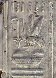'Bee and rush hieroglyph at Abydos.'    In royal nomenclature the rush and the bee hieroglyph generally precede the name of t...