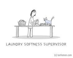list-of-important-cat-jobs-13