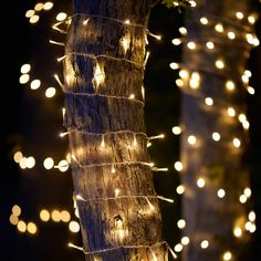 200 Warm Cluster LED Outdoor Light Garland from The Farthing: https://thefarthing.co.uk/products/200-warm-cluster-led-outdoor-light-garland