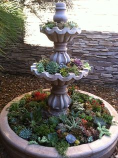 Fountain renovation. Turn a water feature into a unique planter. Low water use succulents transform this Arizona court yard fountain into a colorful, easy maintenance focal point.  Giardinello Landscape & Design, LLC