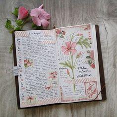 39 Ideas art journal inspiration doodles watercolors for 2019 Garden Journal, Nature Journal, Journal Pages, Journal Layout, Journal Notebook, Bullet Journal Astuces, Watercolor Journal, Art And Illustration, Bullet Journal Inspiration