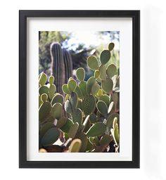 Pour ajouter une touche de verdure sans avoir en entretenir des plantes! Photographie – Cactus Texan Format:12 x 16 pouces Impression sur papier qualité photo au fini glacé. Cactus, Ajouter, Texans, Boutiques, Photoshoot, Portrait, Frame, Pictures, Wedding
