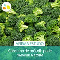 Inclua o brócolis na sua dieta e mantenha ossos e articulações saudáveis! http://maisequilibrio.com.br/brocolis-pode-ajudar-a-prevenir-a-artrite-5-1-4-634.html
