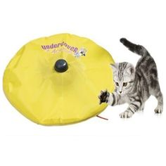 Cat's Meow - As Seen On TV - Undercover Motorized Moving Mouse Cat Toy