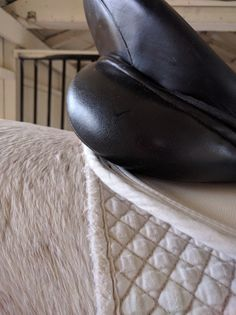 Is your tack irritating to your horse?  PS ... don't stack your pads like this!    http://www.proequinegrooms.com/index.php/tips/saddles-and-bridles/is-your-tack-irritating-to-your-horse/