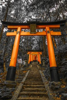 Gateway/arches along the stairway up the hill to the Fushimi Inari shrine, Kyoto, Japan Kyoto Japan, Japon Tokyo, Beautiful World, Beautiful Places, All About Japan, Visit Japan, Japanese Architecture, Japanese Culture, Japan Travel