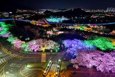 이월드의 30여가지의 놀이기구와 경북의 랜드마크 83타워의 아름다운 전망, 야경을 함께 즐길 수 있는 '별 테마' 축제, 대구 <이월드 별빛축제> (사진_2013 대구관광사진 전국공모전 이정희)