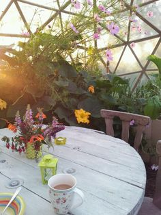 Geodome at home on facebook..The best garden space available.