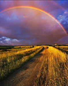 God didn't have to put a rainbow in the sky to remind us but He did and it reminds us that God always keeps His promises. Beautiful Sky, Beautiful World, Beautiful Places, Someday Over The Rainbow, Whole Earth, Rainbow Sky, Gods Creation, Gods Promises, Cool Photos