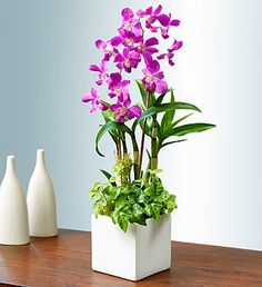 1 800 flowers coupon code shipping
